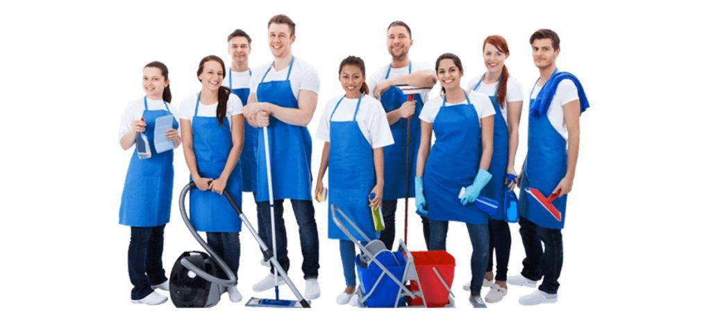 professional team of cleaners